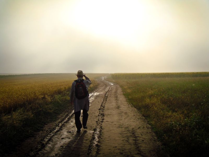 Photo of Man on Dirt Path in Field