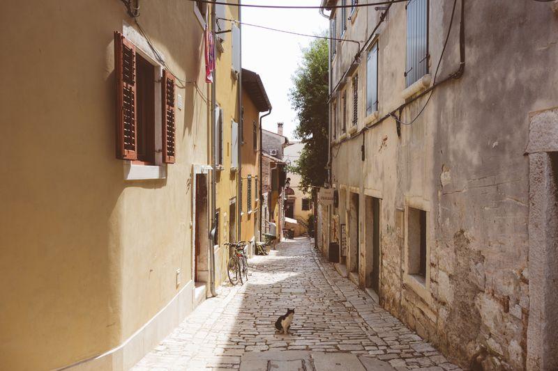 Photo of Cobblestone Street