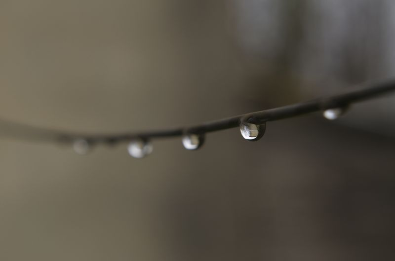 Photo of Water Droplets on Wire