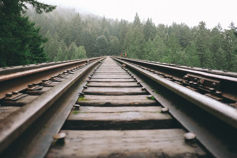 Photo of Train Tracks in Forest