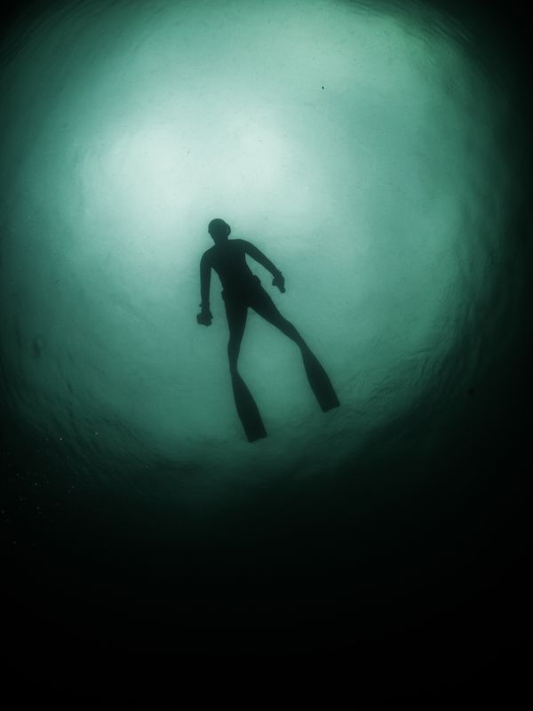 Photo of Diver Silhouette