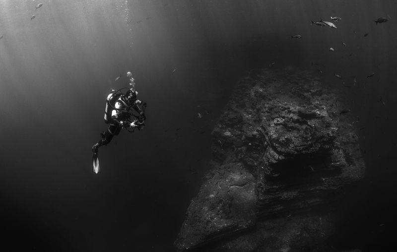 Photo of Scuba Diver