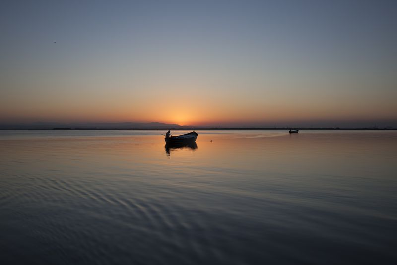 Photo of Rowboats