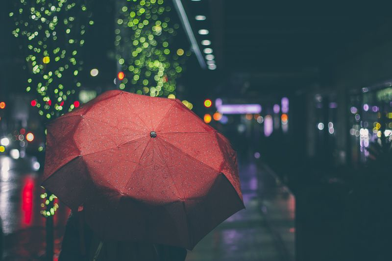 Photo of Person with Umbrella