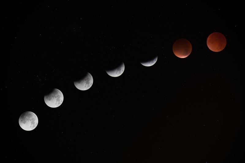 Photo of Blood Moon Phases