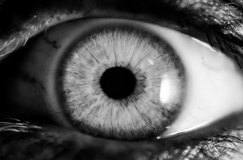 Photo of Eyeball Closeup in Black and White