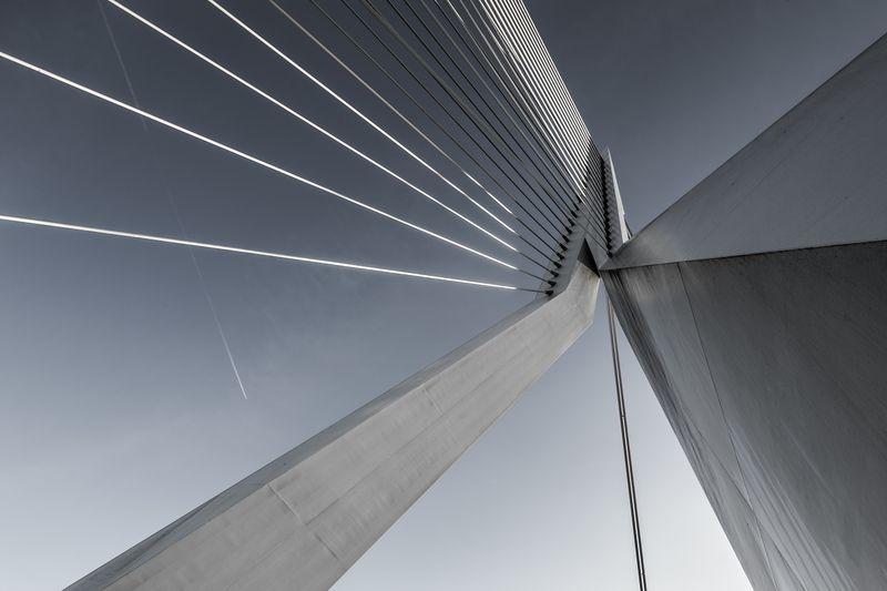 Photo of Erasmus Bridge in Netherlands