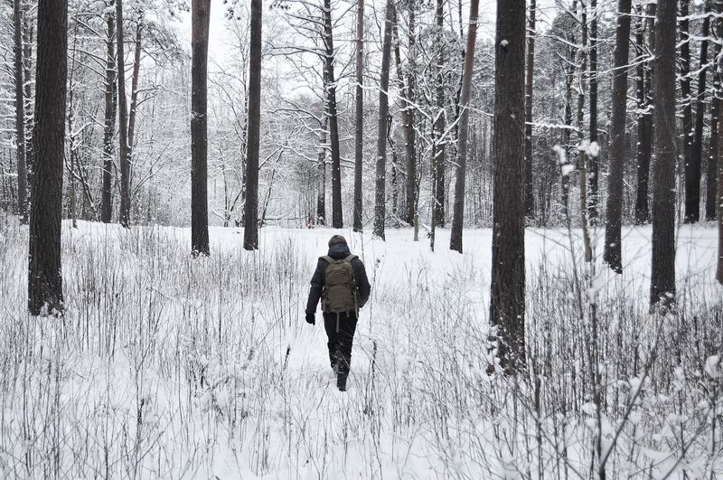 Photo of Person Hiking Through Snowy Forest
