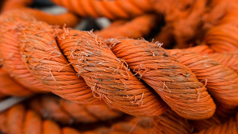 Photo of Thick Rope
