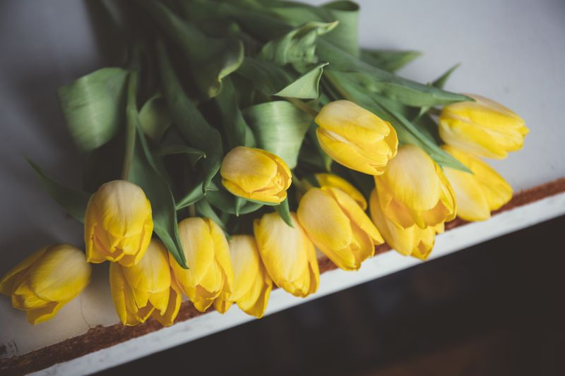 Photo of Bouquet of Yellow Flowers