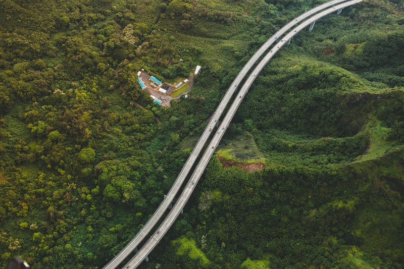 Photo of Highway Surrounded by a Forest