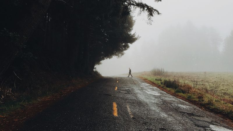 Photo of Man Walking on Foggy Road