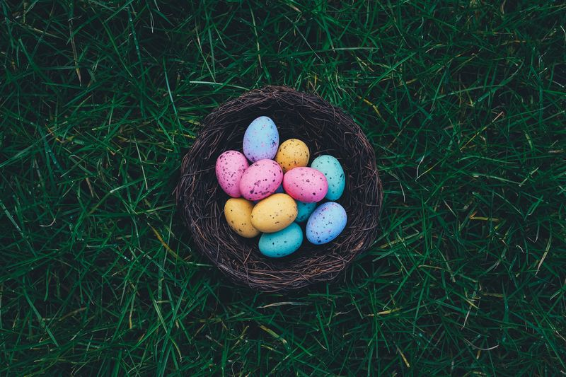 Photo of Pastel Easter Eggs in a Basket on the Grass