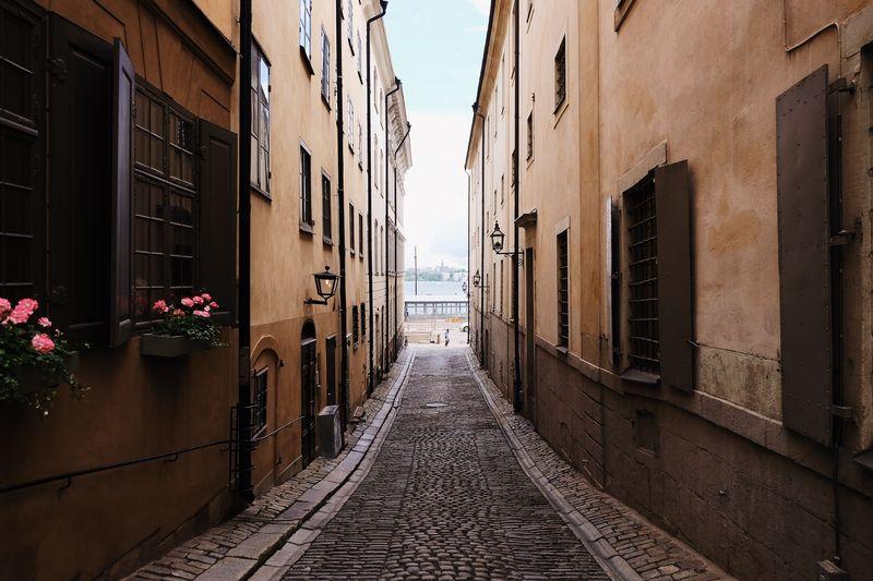 Photo of Cobblestone Street between Buildings