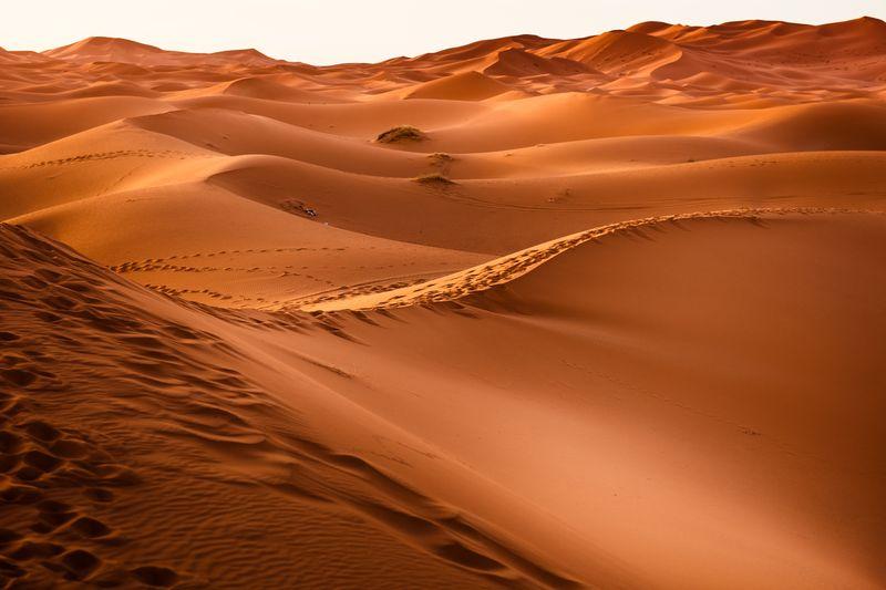 Photo of Desert Landscape