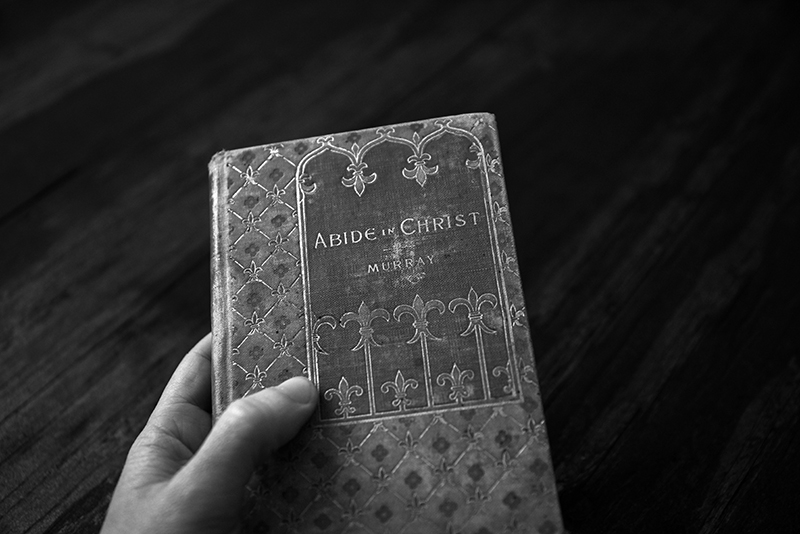 Photo of Abide in Christ Book