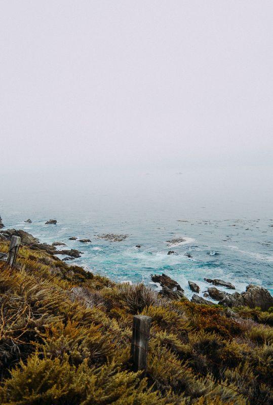 Photo of Rocky Ocean Shore