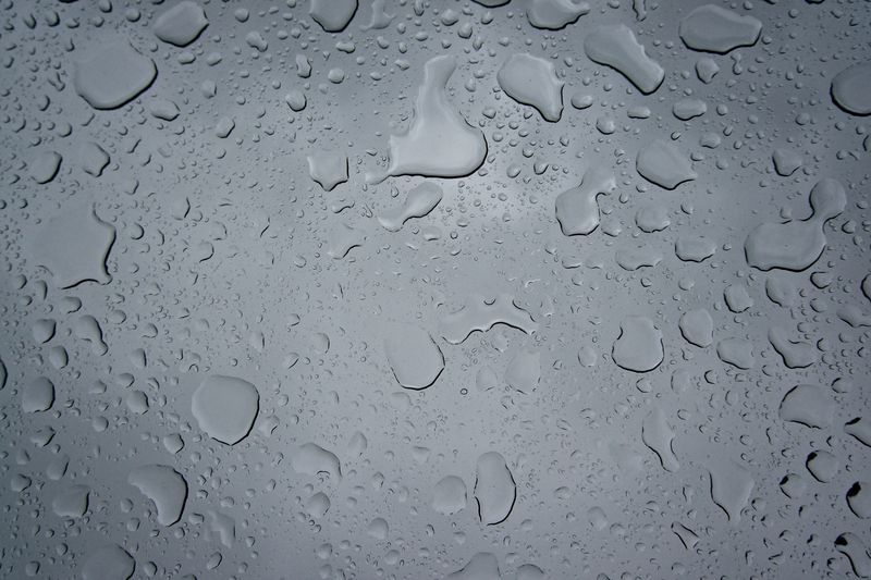 Photo of Water Droplets