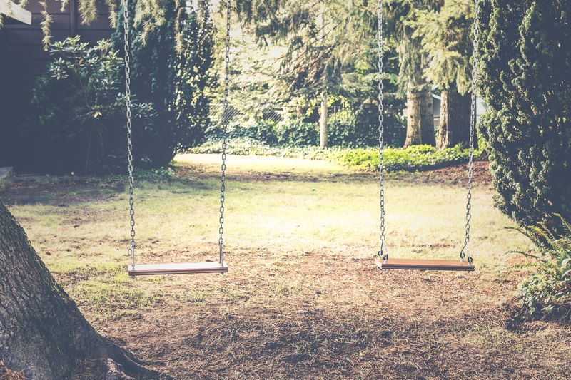 Photo of Two Swings Outdoors