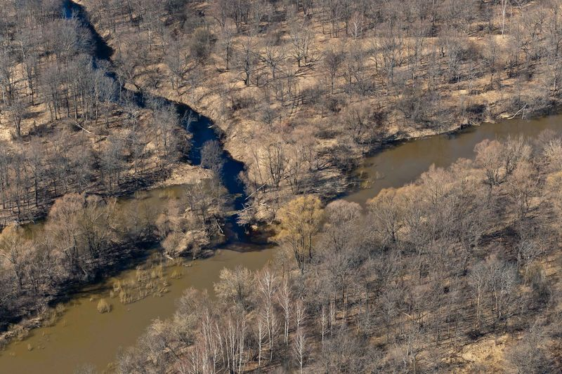 Photo of River Through Wilderness