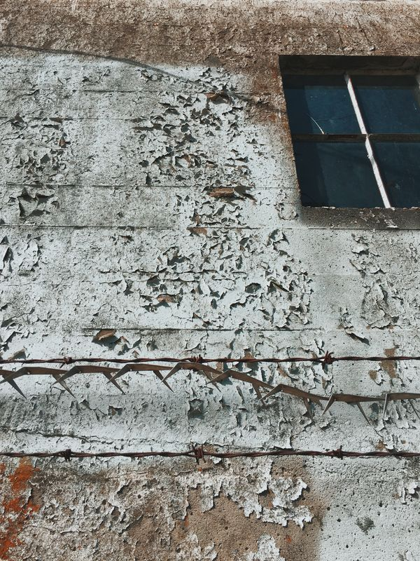 Photo of Barbed Wire on Building