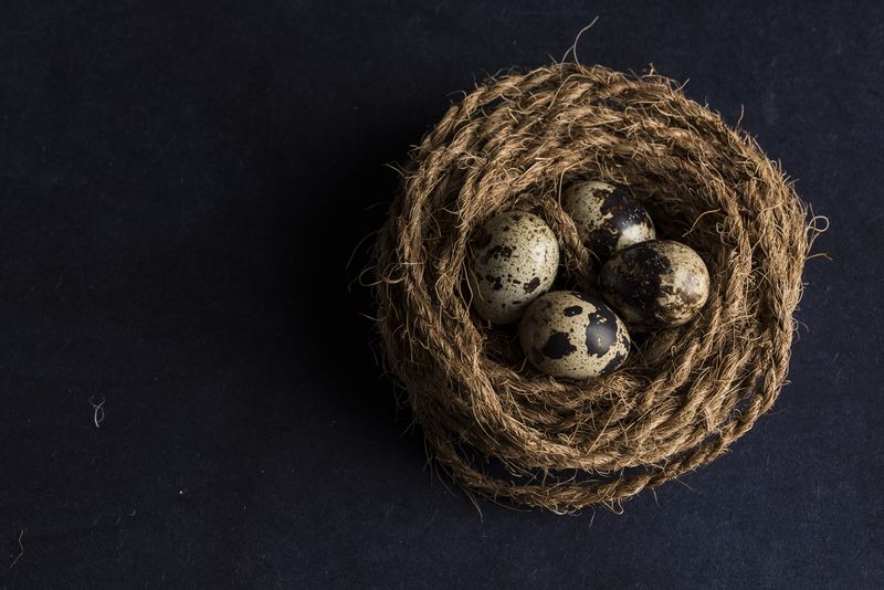 Photo of Eggs in a Nest of Yarn